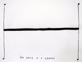 , 'My Voice is a Gemini,' 2015, Carroll / Fletcher