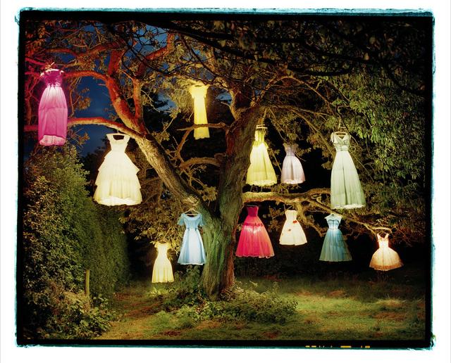 , 'The Dress Lamp Tree, England ,' 2004, Museo Thyssen-Bornemisza