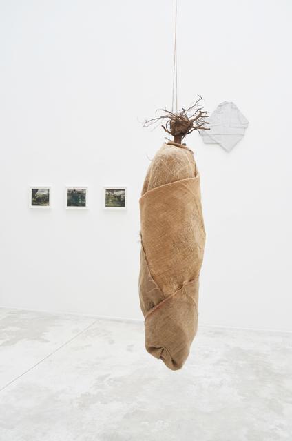 , 'Specter Species,' 2017, Michel Rein Paris/Brussels