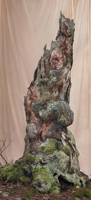 Lovisa Ringborg, 'Turning Tree', 2019, Cecilia Hillström Gallery