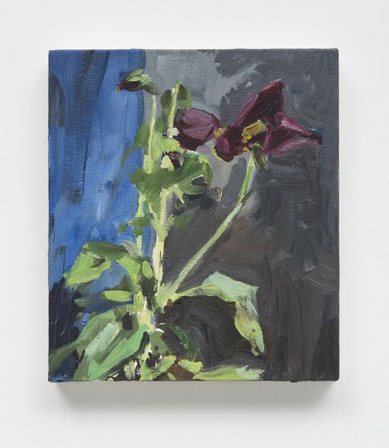 , 'Flores [Flowers],' 2016, Casa Triângulo
