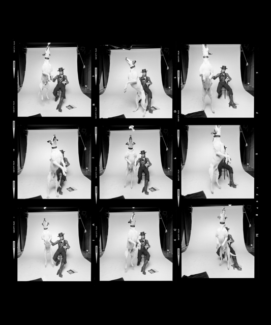, 'David Bowie Diamond Dogs Contact Sheet,' ca. 1974, Mouche Gallery