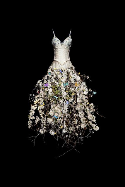 , 'Mariposa ,' 2017, Winston Wächter Fine Art
