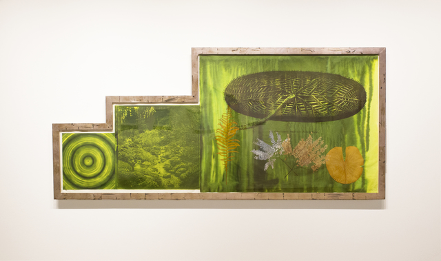 , 'Untitled (Target, Garden, Lily Pad),' 2001, Goya Contemporary/Goya-Girl Press