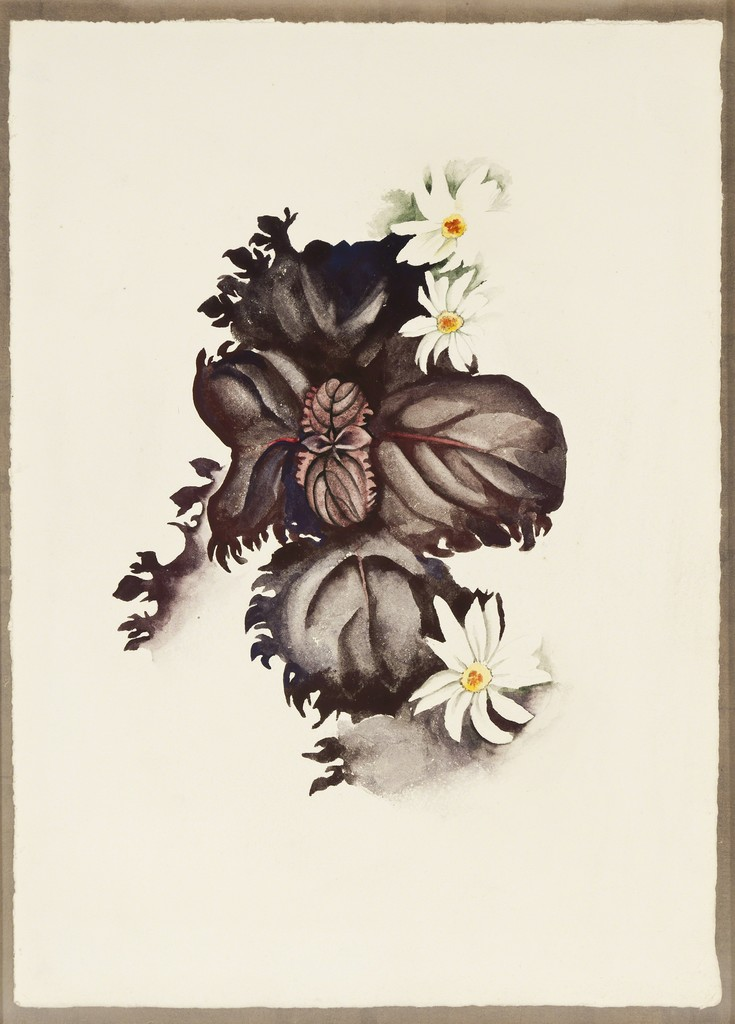 Georgia O'Keeffe, 'No. 36 - Special,' 1920, Gerald Peters Gallery
