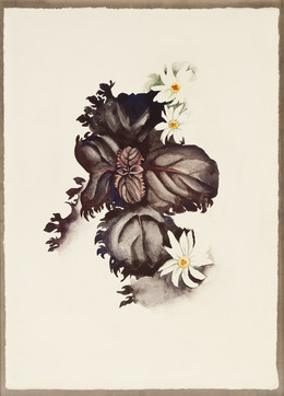 , 'No. 36 - Special,' 1920, Gerald Peters Gallery