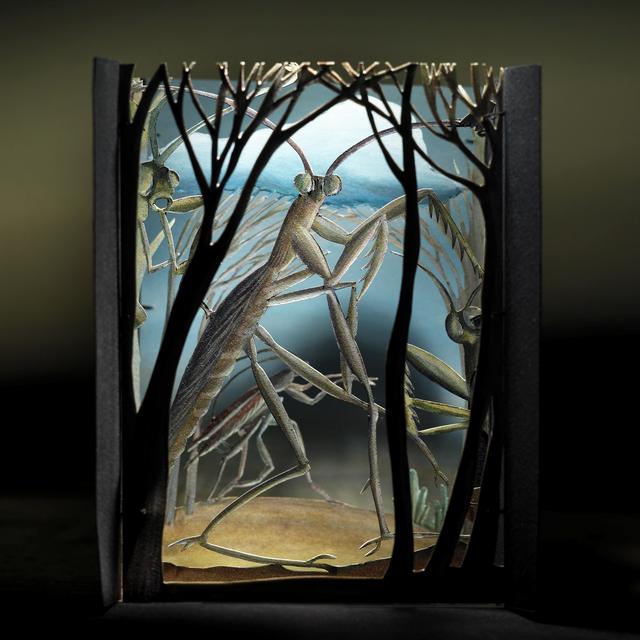 , 'Mantis Diorama,' 2008, Pucker Gallery