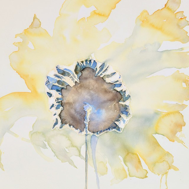 , 'Morning Flower,' 2018, Walker Fine Art