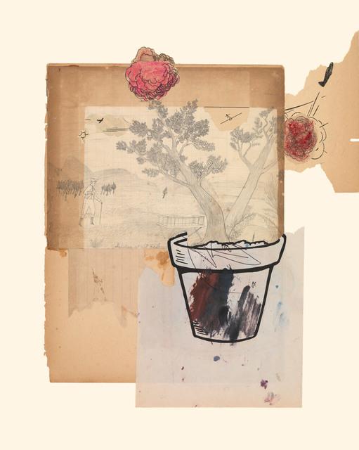 , 'Planter 8/21/15,' 2015, Miller Yezerski Gallery
