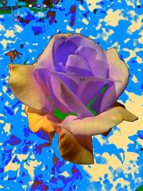 Masood Kamandy, 'Night Flower (Blue)', 2016, Luis De Jesus Los Angeles