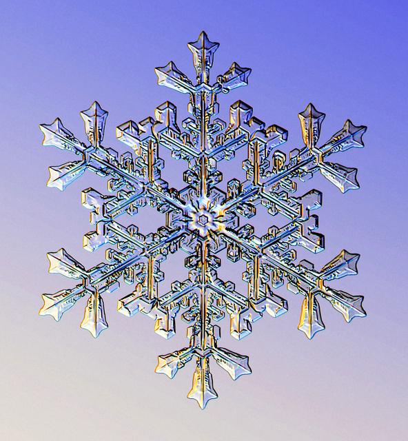 , 'Snowflake #6,' 2016, Richard Levy Gallery
