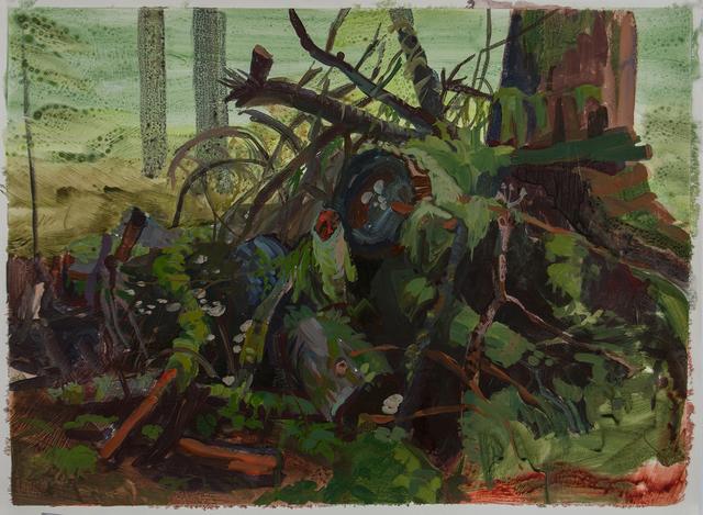 , 'Forest Debris,' 2016, Inman Gallery