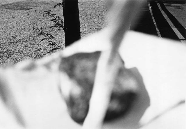 , 'Pictus Interruptus,' 1978, Laurence Miller Gallery