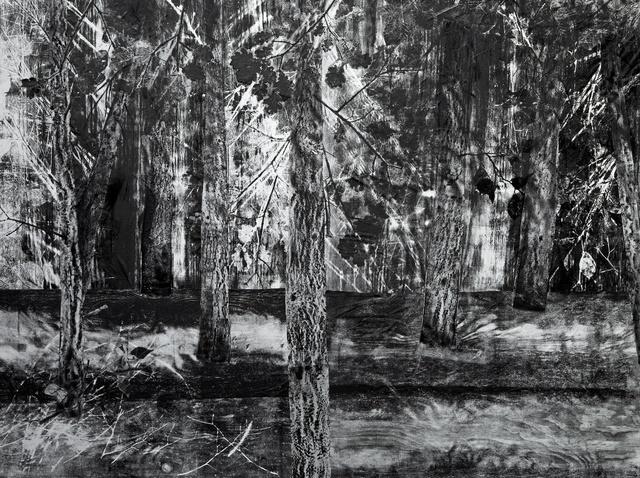 , 'Kempen,' 2010-2014, Light Cube Art Gallery