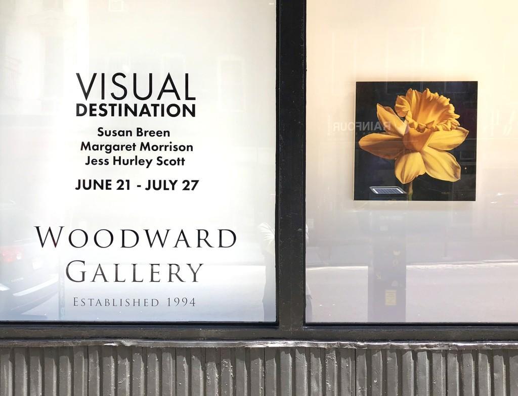 VisualDestination.art