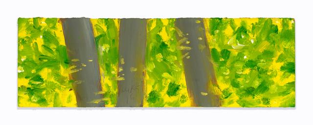, 'Three Trees,' 2016, Richard Gray Gallery