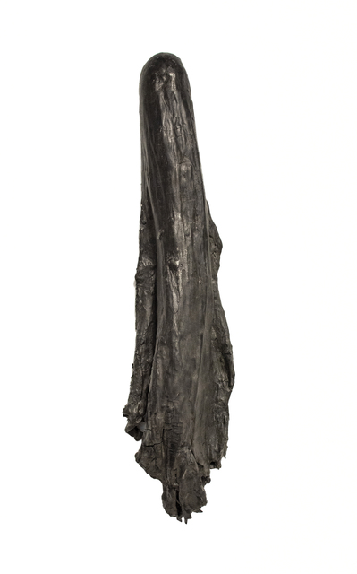 Erin Woodbrey, 'Fragment (Sleeve and Shoulder of a Silk Dress)', 2018, Gaa Gallery