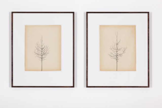 , 'Pair of Winter Drawings 28vs31 and 28vs29, 30 December 2015,,' 2015, Ingleby Gallery