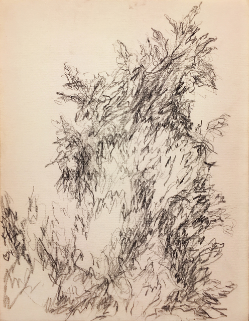 , 'Untitled,' 1953, Washburn Gallery