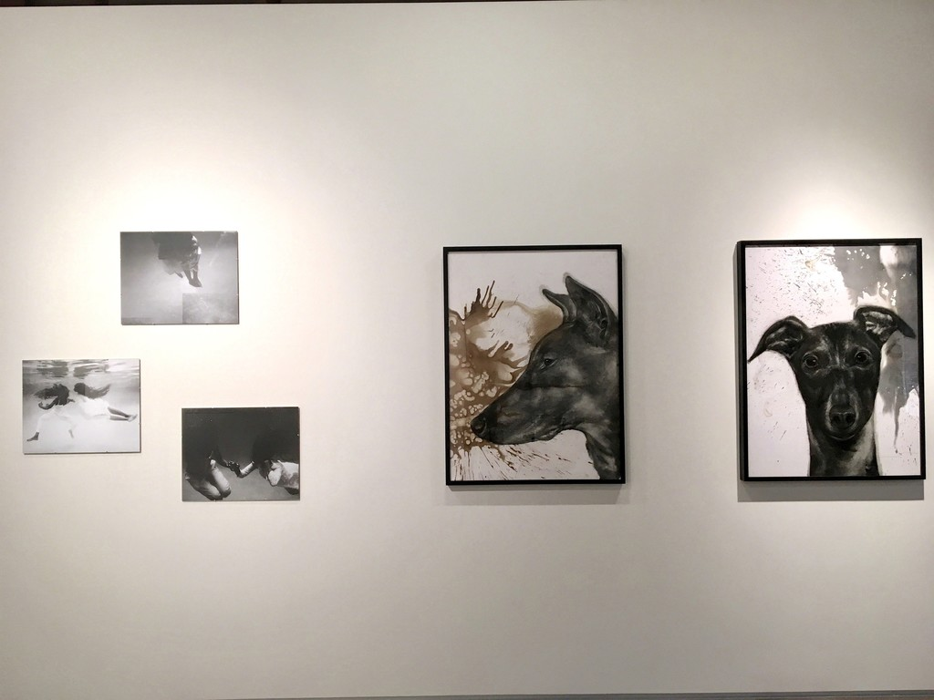 Photographs by Henny Harmon on Left, mixed media drawings by Juan Perdiguero on Right