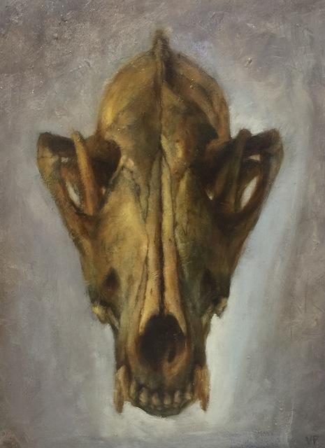 , 'Skull (Coyote),' 2017, Flower Pepper Gallery