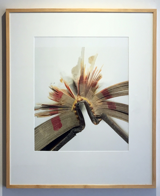 , 'Book 28, Framed,' 2008, Duane Reed Gallery