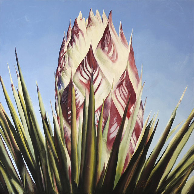 , 'Joshua Tree Bud #1,' 2013, Asher Grey Gallery
