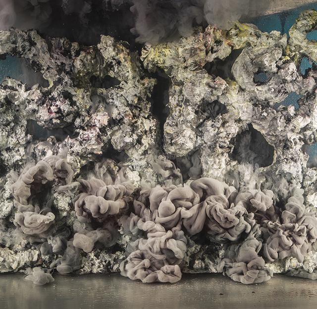 , 'Abstract 35734,' 2017, Winston Wächter Fine Art