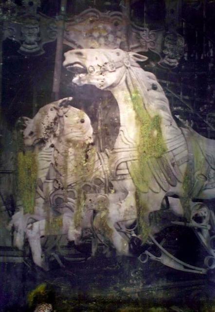 , 'Cavalli,' 2011, Aria Art Gallery