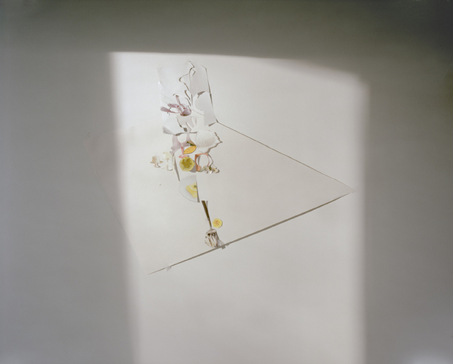 ", 'Untitled #13, from the series ""Ill Form & Void Full"",' , Yancey Richardson Gallery"