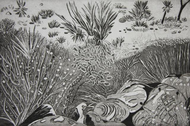 Kate Crook, 'Joshua Tree #1', 2017, Print, Lithograph , Ed. 50 , Somerset White Paper, acid free, Asher Grey Gallery