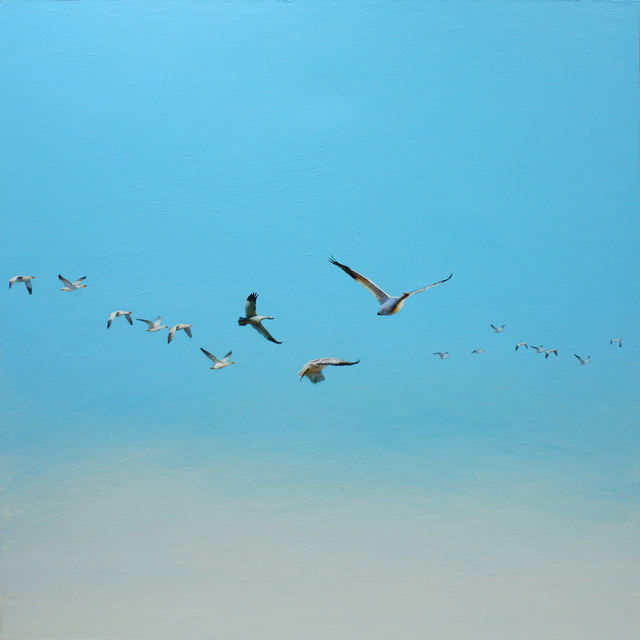 , 'Snow Geese in a Blue Sky,' 2015, J GO Gallery