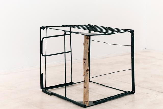 , 'Wild Cube,' 2018, Galerie Krinzinger