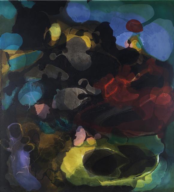 , 'Fields of Study,' 2015, Nancy Hoffman Gallery