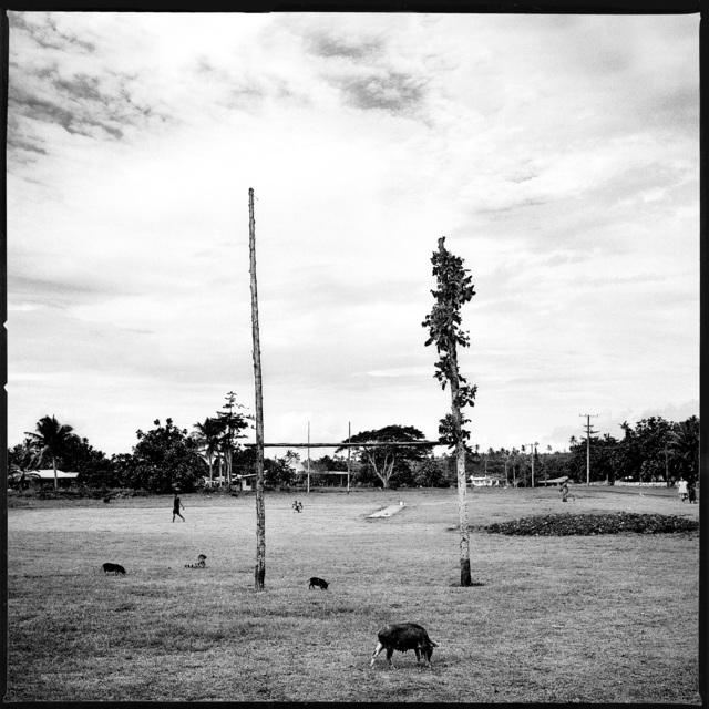 , 'Samoa,' 1999, Galerie Jean-Denis Walter