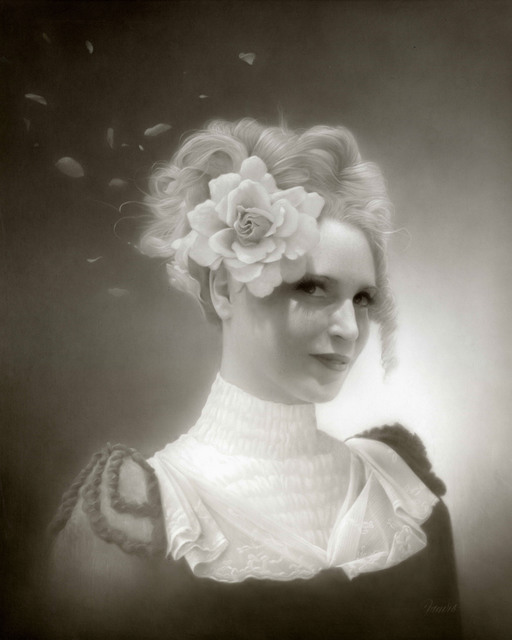 , 'Miss Mary Olmstead and her Ghostly Petals,' 2016, KP Projects