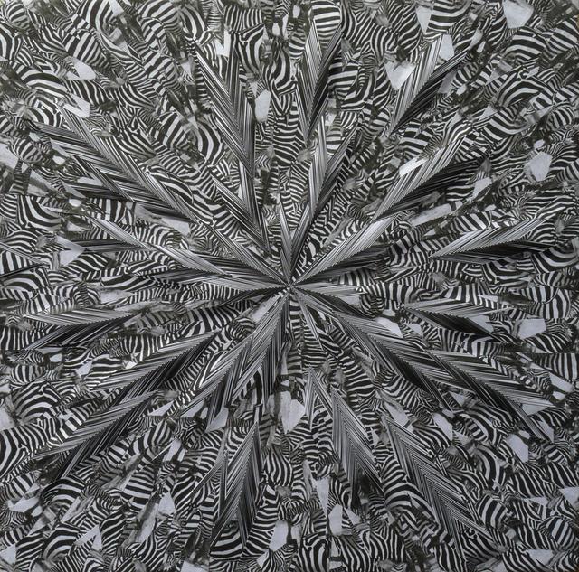 Lola Dupré, 'Liquid Zebra', 2014, River