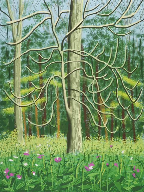 David Hockney, 'The Arrival of Spring in Woldgate, East Yorkshire in 2011', 2011, DELAHUNTY