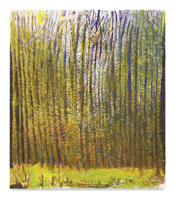 Wolf Kahn, 'Summer Light Caught in the Woods', 2017, Tayloe Piggott Gallery