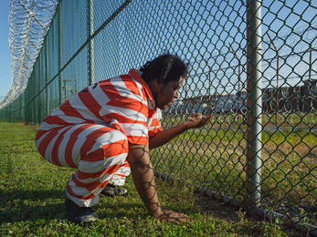 Troy Holding a Guinea Fowl Chick, Rikers Island Jail Complex, New York
