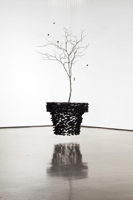 , 'An aggregation - plant pot -201707,' 2017, Pyo Gallery