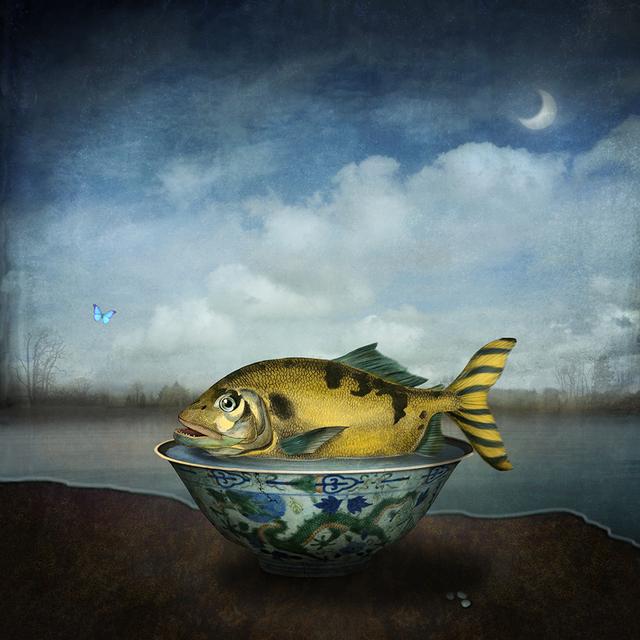 , 'Low tide,' 2014, photo-eye Gallery
