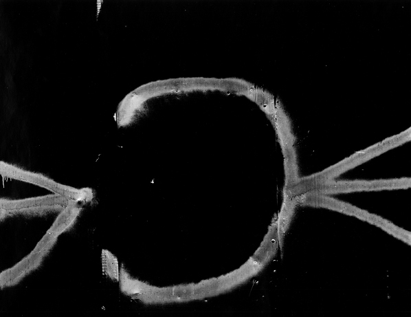 , 'Chicago 56,' 1960, Scott Nichols Gallery