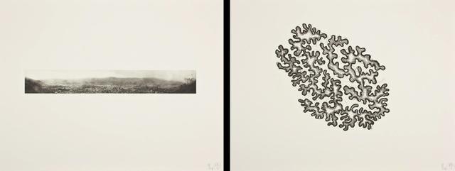 Richard Deacon, 'Borderline - Caracas (diptych)', 2011, Kunstverket Galleri
