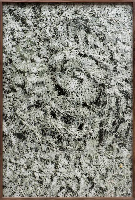 , 'Counterform Spiral VI,' 2017, Moskowitz Bayse