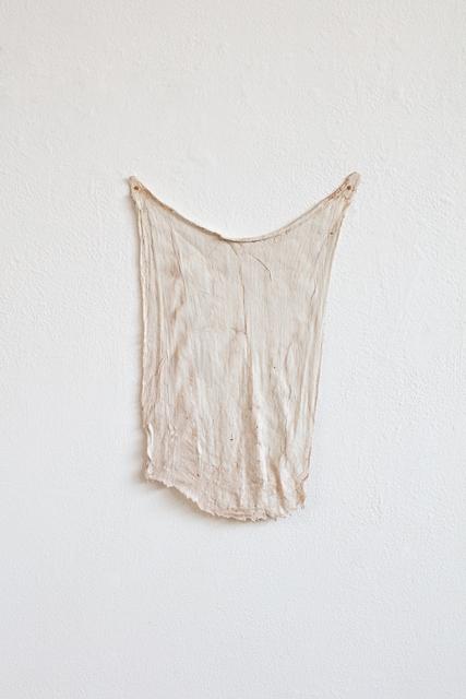 , 'Romola's rag,' 2017, rosenfeld porcini
