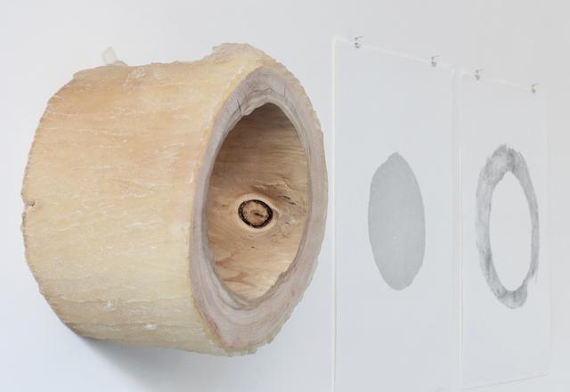 , 'A01_24,' 2012, Galleria Raucci / Santamaria