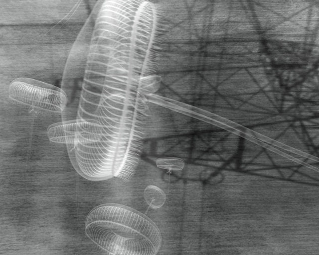 Katja Davar, 'Shells on Mountain Tops', 2006, Video/Film/Animation, Animation, black and white, silent, Kadel Willborn