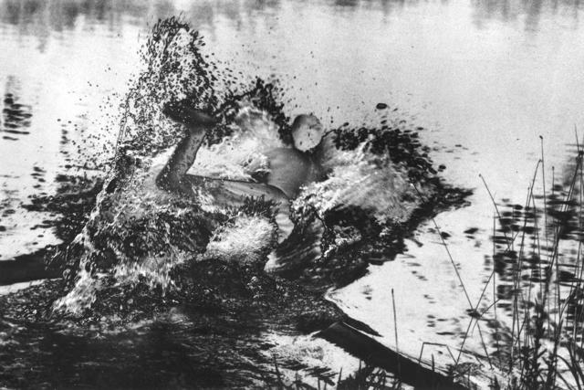 , 'Khyber Diving,' 2013, HARPY