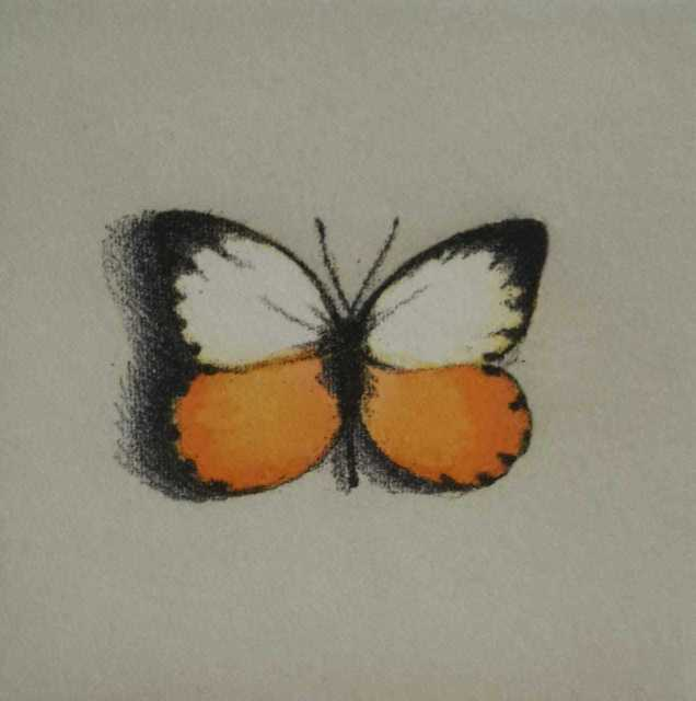 Lisa Milroy, 'Butterfly IV', 1994, One Off Contemporary Art Gallery